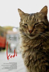 kedi-film-poser+2